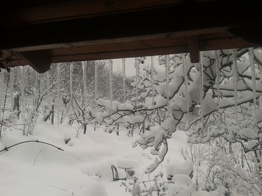 Snow view from porch
