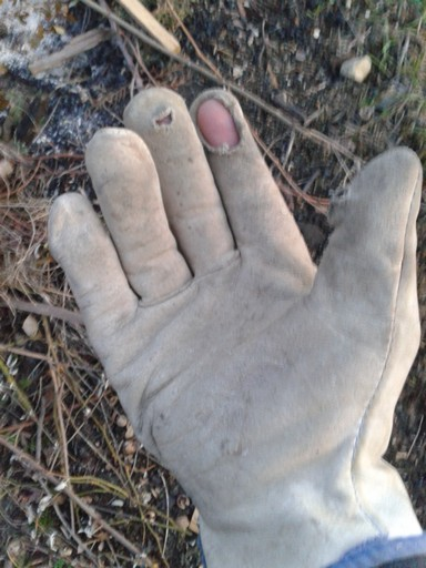 I work my gloves hard, and wear them out so fast I buy gloves by the bushel.