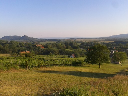 The view of Lake Balaton from the top of Property 2.