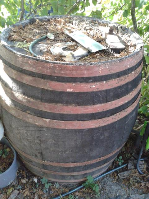 A 350 liter oak barrel I removed from our cellar.