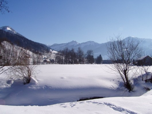 Winter - An idyllic view.