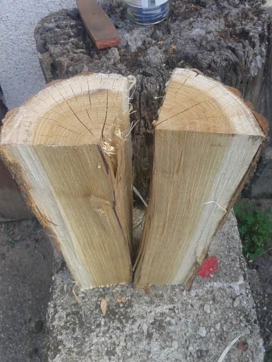 A freshly split firewood log for testing moisture content.