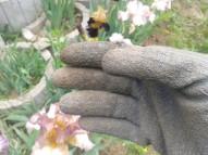 Put on some light gardening gloves.